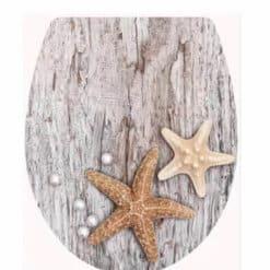 מושב אסלה אלמוגים על עץ